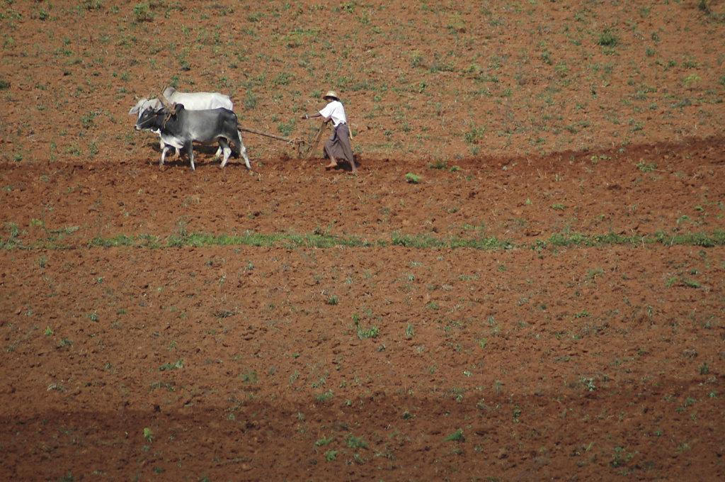 06-EsterMisto-NelTempo-Birmania.jpg